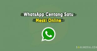 cara whatsapp centang satu